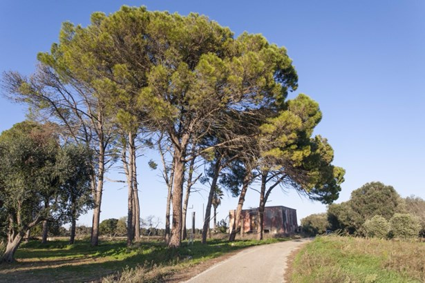 Sp 71 Sp, Latiano - ITA (photo 2)