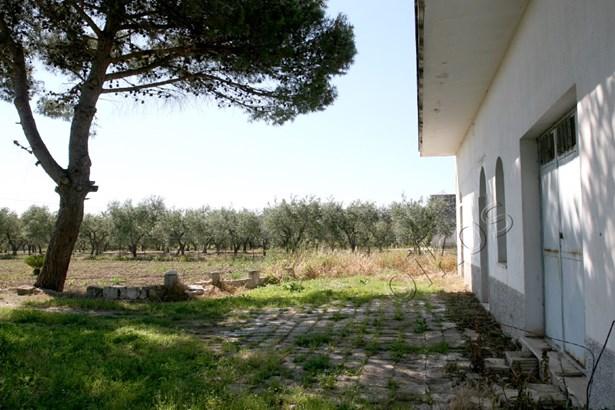 Sp 53 Sp, Francavilla Fontana - ITA (photo 5)