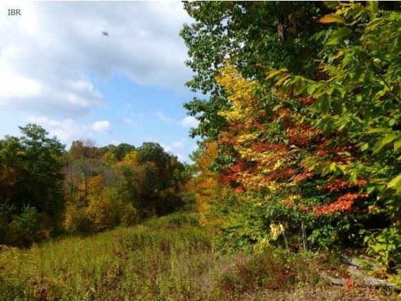 0 Reservoir Hill Road, Candor, NY - USA (photo 3)