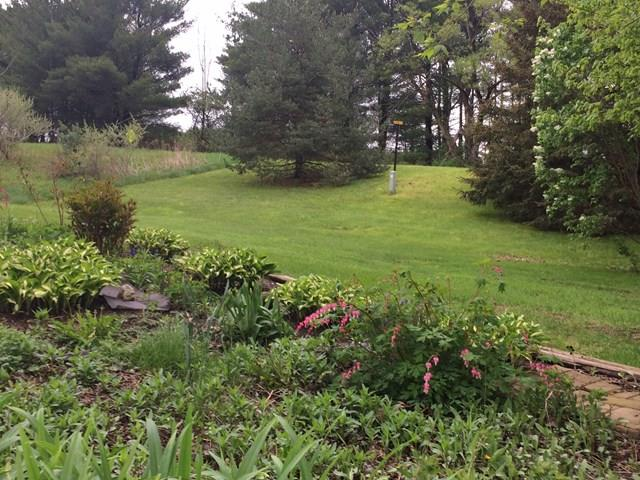 587 Watercure Hill Road, Elmira, NY - USA (photo 5)