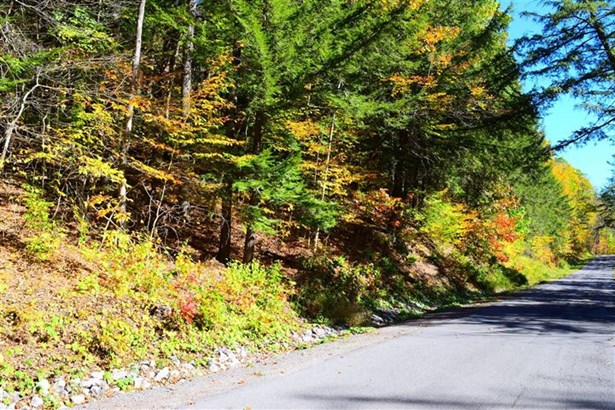 1819 Westkill Road, N Blenheim, NY - USA (photo 5)