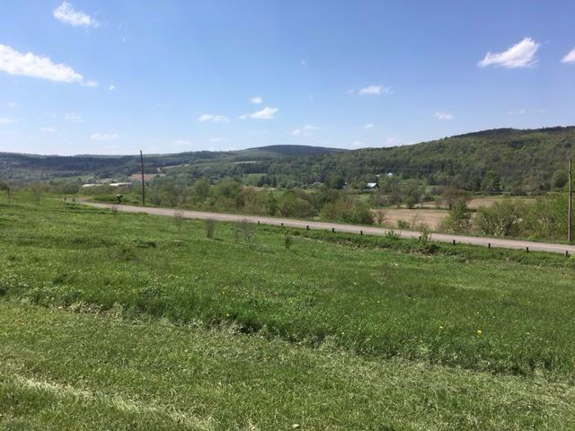 0 County Road 18, Morris, NY - USA (photo 5)
