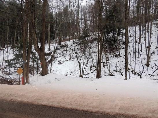 0 Searles Hill Road, Bainbridge, NY - USA (photo 4)