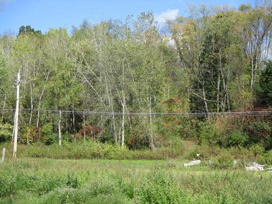 2000 County Route 60, Elmira, NY - USA (photo 1)