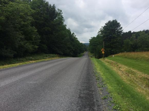 3950 Vanzandt Hollow Road, Watkins Glen, NY - USA (photo 4)