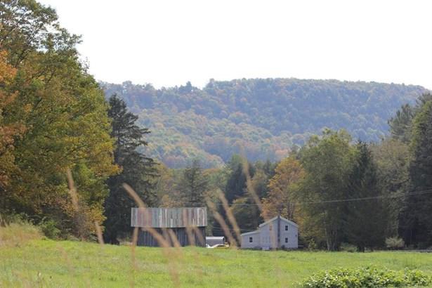 1615 Left Pines Brook Road, Walton, NY - USA (photo 5)