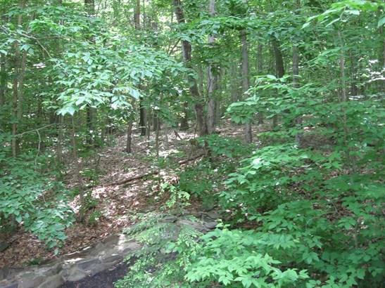 31 Tanglewood Trail, Campbell, NY - USA (photo 5)