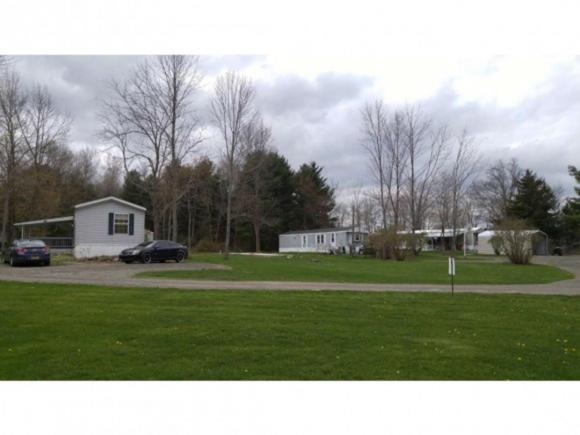 5360 State Route 227, Trumansburg, NY - USA (photo 4)