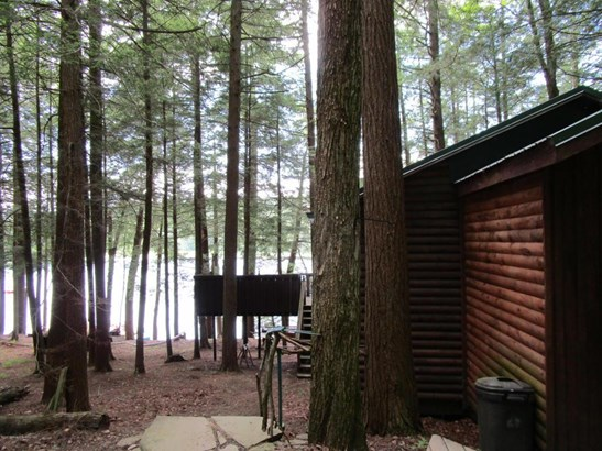 35 Cranberry Lake, Brackney, PA - USA (photo 2)