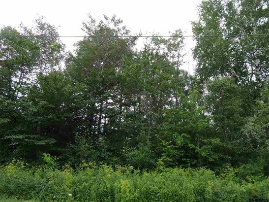 Lot 8 Reynolds Rd, Princetown, NY - USA (photo 1)