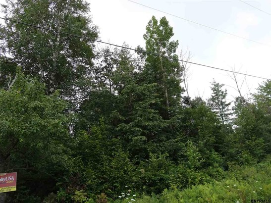 Lot 8 Reynolds Rd, Princetown, NY - USA (photo 2)
