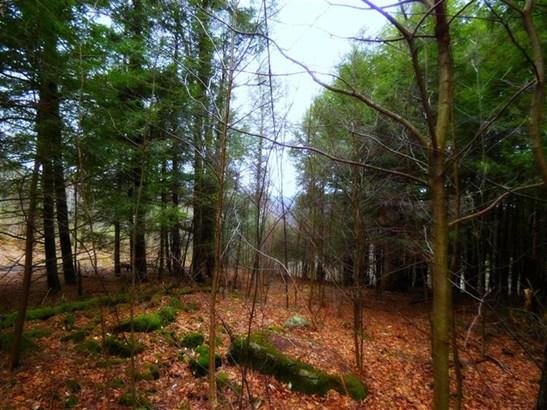 0 Hog Mountain Road, Middletown, NY - USA (photo 2)