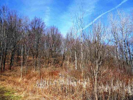 County Rt 408, Westerlo, NY - USA (photo 2)