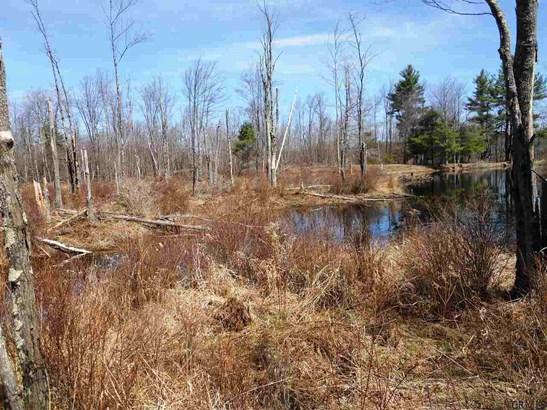 County Rt 408, Westerlo, NY - USA (photo 4)