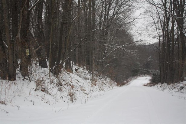 233 Allen Road, Exeter, NY - USA (photo 4)