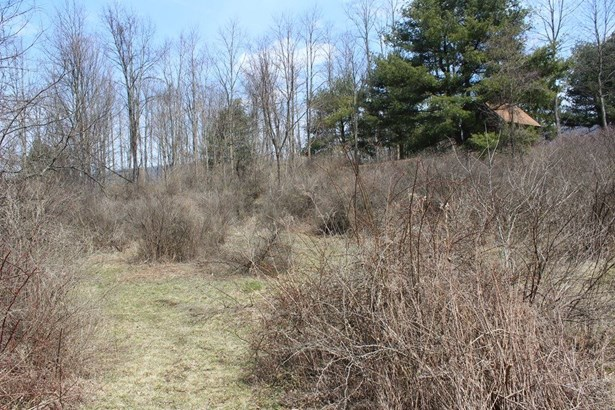 0 West Danby Road, Newfield, NY - USA (photo 2)