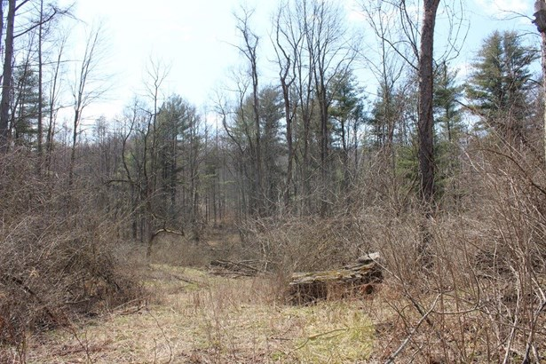 0 West Danby Road, Newfield, NY - USA (photo 4)