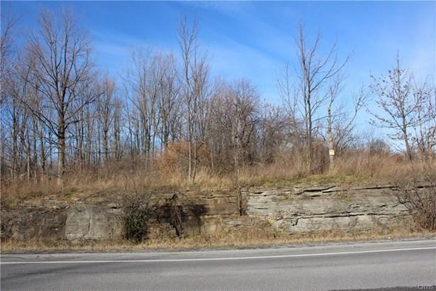 0 Nys Rt 411, La Fargeville, NY - USA (photo 2)