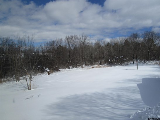 8984 Mariaville Rd, Duanesburg, NY - USA (photo 5)