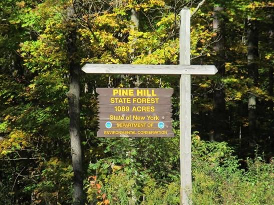 2694 Parker Hollow Road, Masonville, NY - USA (photo 4)