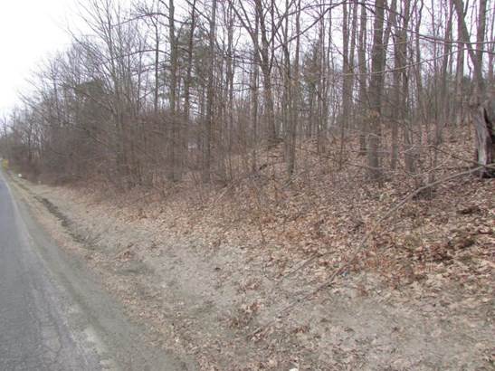 Lot C Guilder Hollow Road, Granville, NY - USA (photo 3)