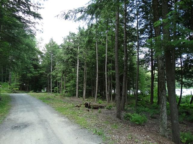 66 Tanglewood Trail, Campbell, NY - USA (photo 2)