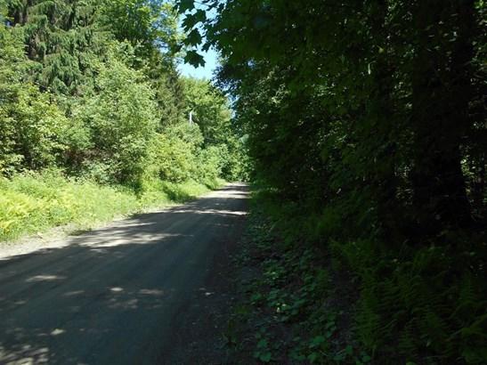 150 Murphy Road, Butternuts, NY - USA (photo 5)