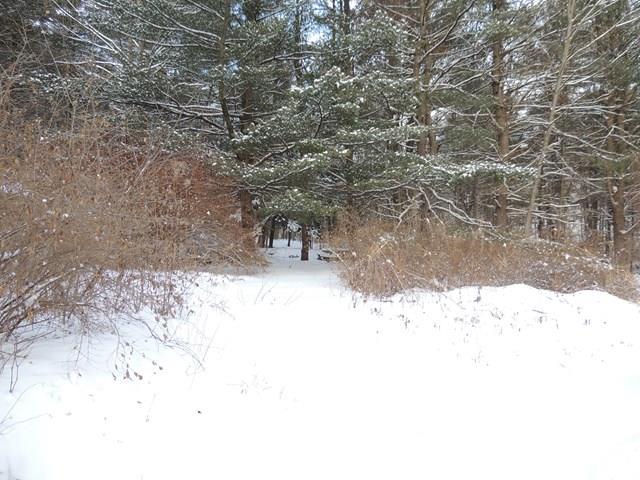 2909 Markle Hollow Rd., Corning, NY - USA (photo 1)
