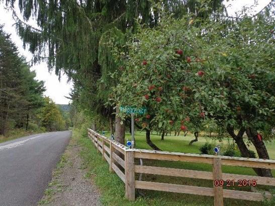 969 Swart Hollow Road, Davenport, NY - USA (photo 5)
