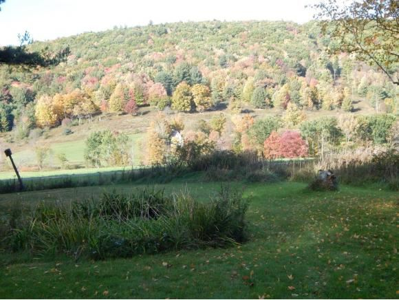 1362 Mt. Valley Road, Hallstead, PA - USA (photo 4)