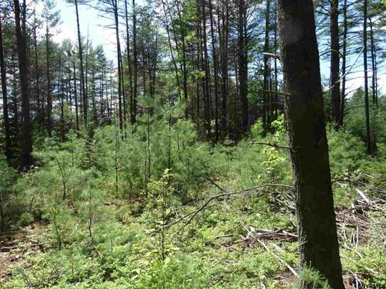 Lot 34.14 Andrew Pond Rd, Chestertown, NY - USA (photo 1)