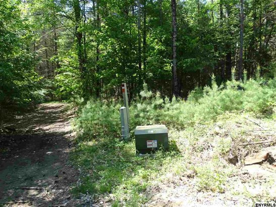 Lot 34.14 Andrew Pond Rd, Chestertown, NY - USA (photo 3)
