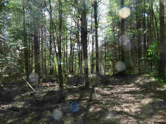 Lot 34.14 Andrew Pond Rd, Chestertown, NY - USA (photo 4)