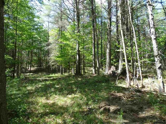 Lot 34.14 Andrew Pond Rd, Chestertown, NY - USA (photo 5)