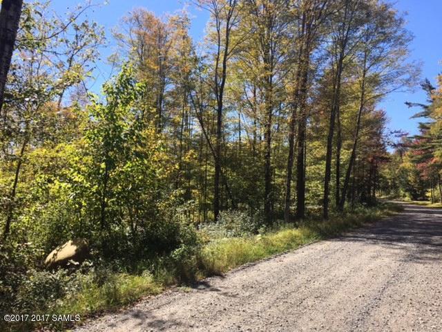 0 States Road, Stony Creek, NY - USA (photo 3)