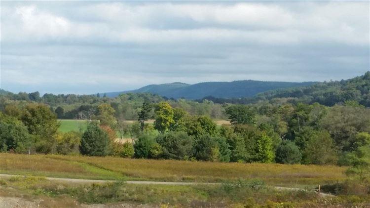 4740 State Highway 28, Hartwick, NY - USA (photo 2)