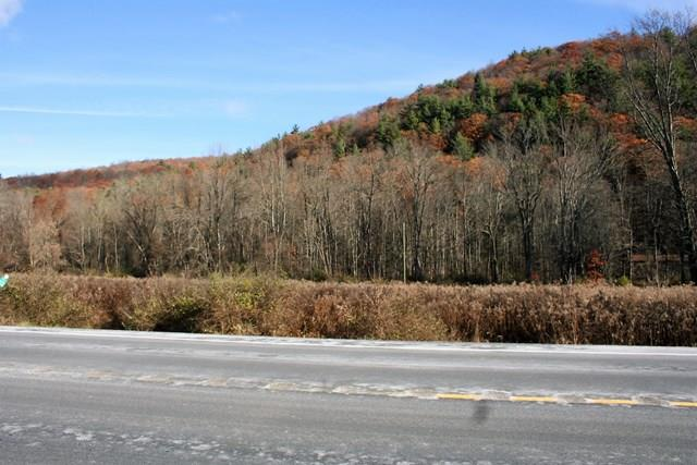 0 State Route 415, Campbell, NY - USA (photo 3)