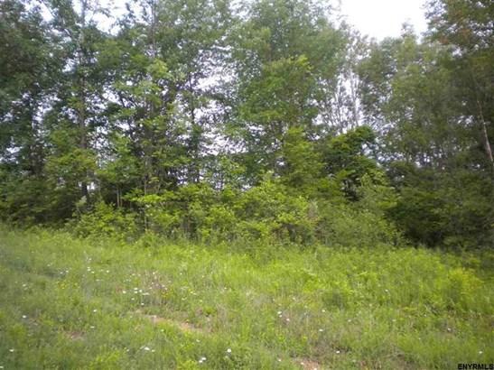 168 Edgewood Dr, Cobleskill, NY - USA (photo 5)