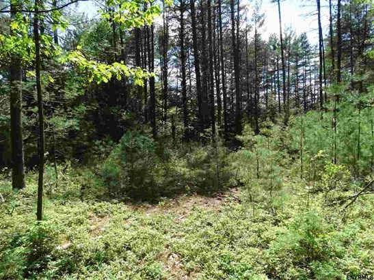 Lot 34.4 Andrew Pond Rd, Chestertown, NY - USA (photo 1)