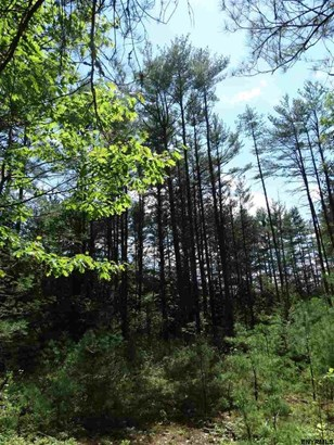 Lot 34.4 Andrew Pond Rd, Chestertown, NY - USA (photo 2)