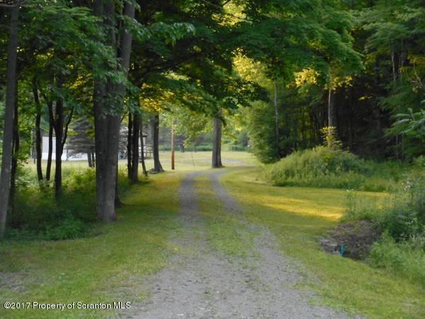 3583 Starrucca Creek Road, Susquehanna, PA - USA (photo 2)