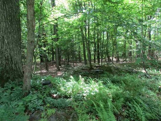562 Big Woods Rd, Greenville, NY - USA (photo 5)
