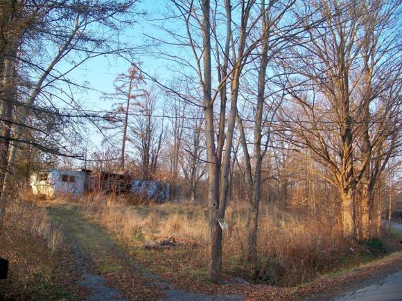 74 Fishkill Road, Newfield, NY - USA (photo 5)