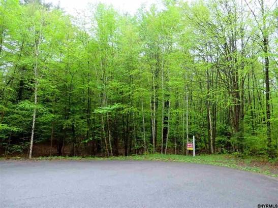 Lot 21 Pine Orchard Rd, Hague, NY - USA (photo 1)