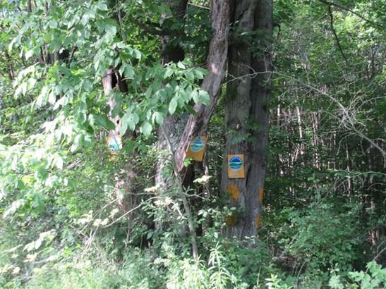 0 Cueball Road, Coventry, NY - USA (photo 2)
