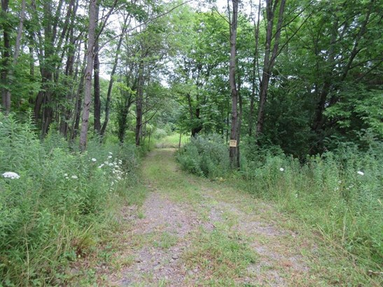 0 Wothe-freeman Road, Lincklaen, NY - USA (photo 1)