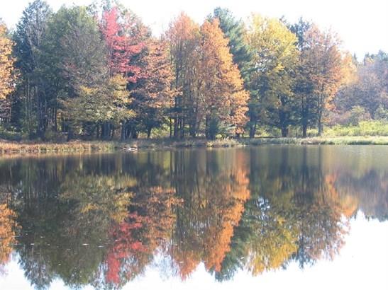 579 Buck Horn Lake Road, Unadilla, NY - USA (photo 3)
