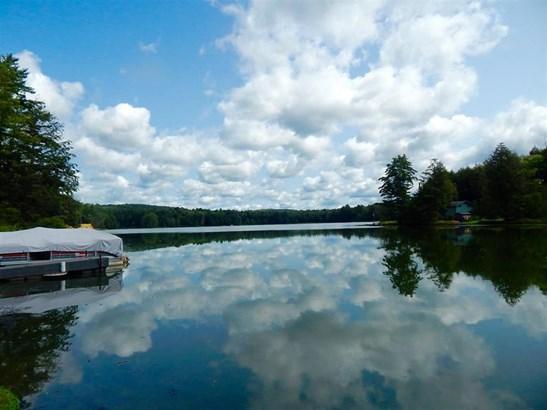 579 Buck Horn Lake Road, Unadilla, NY - USA (photo 4)