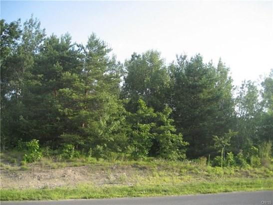 0 Pierce Drive, Volney, NY - USA (photo 1)