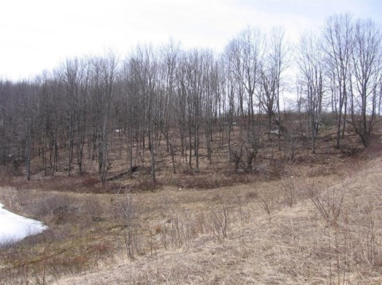 0 County Road 3 -lot 3, Unadilla, NY - USA (photo 1)